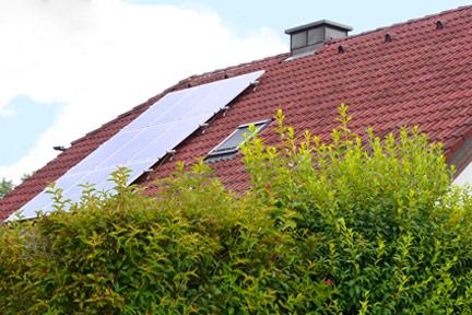 Schrägdach mit Photovoltaik und Busch davor